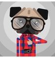 Cute fashion Hipster pug dog pet vector image