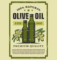 olive vegetable oil in glass bottle retro poster vector image vector image