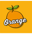 orange fresh fruit premium quality vector image vector image