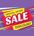 sale - horizontal banner template concept vector image vector image