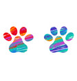 two cats colorful paws vector image vector image
