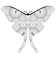 Zentangle stylized butterfly hand drawn lace