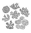 Doodle set of corals vector image vector image