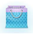 Gift shopping bag vector image vector image