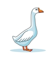 Hand drawn goose animal cartoon vector image