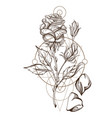hand drawn rose floral design element outline for vector image vector image