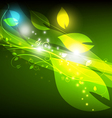 nature abstract background vector image