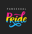 pansexual movement pride hand written poster vector image vector image