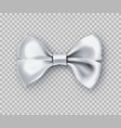 sparkling white bow tie from satin material vector image vector image