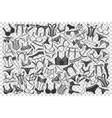underwear doodle set vector image vector image