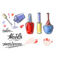 a set of nail polish for manicure hand drawn vector image