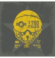 american air force grunge effect vector image vector image