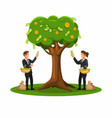 harvest money from tree finance investment icon vector image vector image