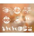 set pet care labels badges and design elements vector image
