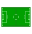 Soccer field with Line and Grass Texture vector image