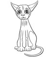 sphynx cat cartoon character coloring book page vector image vector image