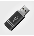 USB memory stick vector image