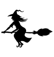 witch broom vector image vector image