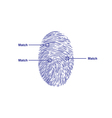 fingerprint match vector image vector image