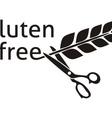 Gluten free symbol vector image vector image