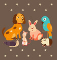 images domestic animals cat parrot dog snail vector image vector image