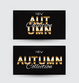 new autumn collection card template vector image vector image