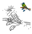 numbers game racket-tail hummingbird vector image vector image