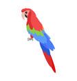 ara parrot cartoon icon in flat design vector image vector image
