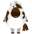 cute horse on white background vector image
