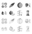 design test and synthetic icon set of vector image vector image