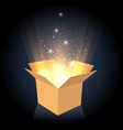magic cardboard box with light vector image vector image