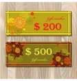 Voucher Gift certificate Coupon template for vector image vector image