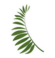 fern frond icon cartoon style vector image vector image