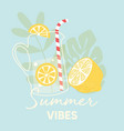 fruit design with summer vibes typography slogan vector image vector image
