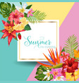 hello summer tropic design tropical hibiskus vector image vector image