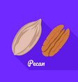 pecan icon flat style vector image vector image