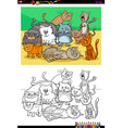cats and kittens characters group color book vector image vector image