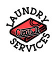 color vintage laundry services emblem vector image