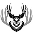 decurated deer head isolated vector image vector image