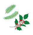 flat holly spruce leaves branch berry set vector image vector image
