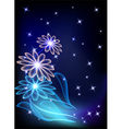 flowers and stars vector image vector image