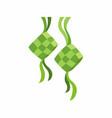 ketupat decoration for ied al fitr ramadan vector image vector image
