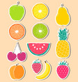 stickers hand drawn fruits vector image