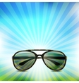 Sunglasses isolated background vector image vector image