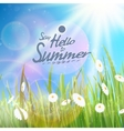 Sunny natural background with sun and grass vector image vector image