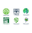 tree logo templates collection abstract organic vector image vector image