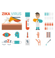 Zika virus concept vector image