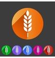 Gluten free icon flat web sign symbol logo vector image