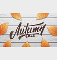 autumn sale autumn layout design with wooden vector image vector image