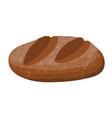brown bread loaf rye bread roll baguette vector image vector image